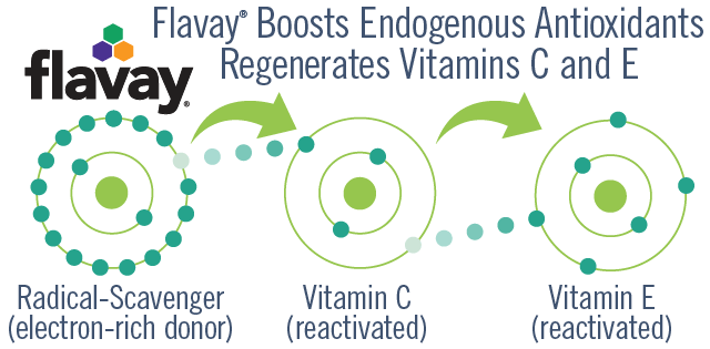 Flavay regenerates the network antioxidant capacity of vitamins C and E. Flavay is a radical-scavenger with 8 active sites. Vitamin C has 1 active site. Vitamin E has 2 active sites. Diagram shows Flavay donating an electron to vitamin C which then may donate an electron to vitamin E.