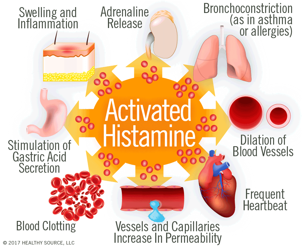 Activated histamine causes swelling and inflammation; adrenaline release, vessels and capillaries increase in permeability; dilation of blood vessels; stimulation of gastric acid secretion; broncho-constriction; blood clotting.