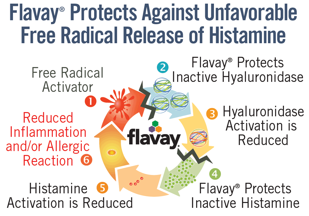 Anti-inflammatory activity of Flavay: Flavay protects against unfavorable free-radical release of histamine. Cycle shows: 1 Free radical activator. 2 Flavay protects inactive hyaluronidase. 3 results in reduction of hyaluronidase activation. 4 which protects inactive histamine. 5 which reduces histamine activation. 6. which reduces inflammation and allergic response.