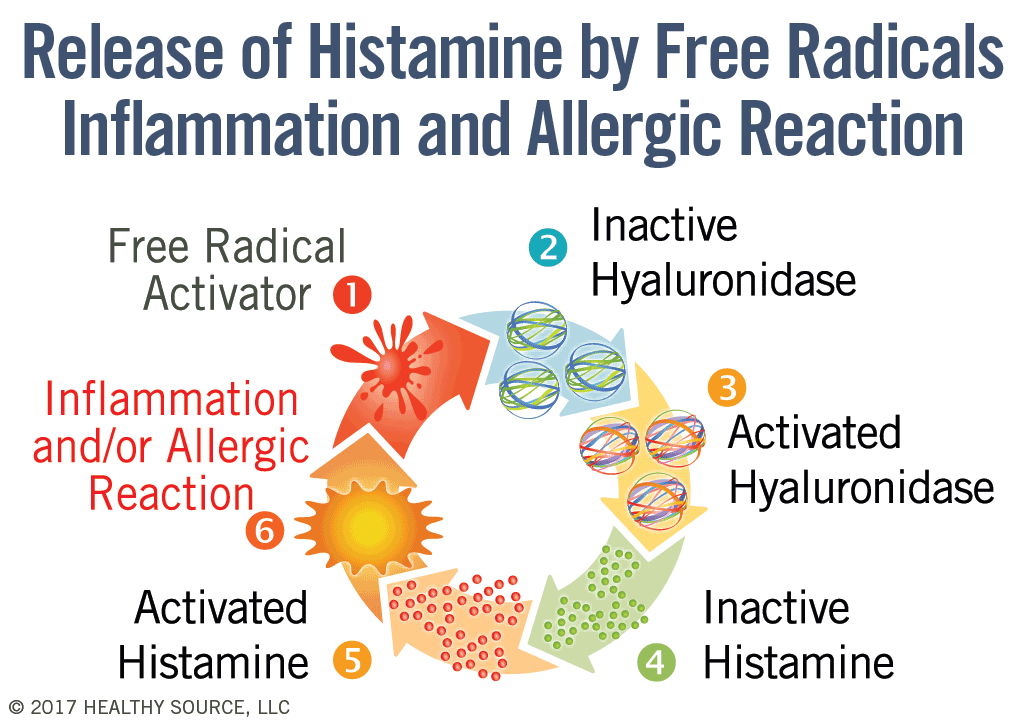 Cycle of histamine activation pathway. Cycle shows: 1 Free radical activator. 2 inactive hyaluronidase, 3 activated hyaluronidase, 4 inactive histamine, 5 activated histamine 6 which results in inflammation and or allergic reaction.