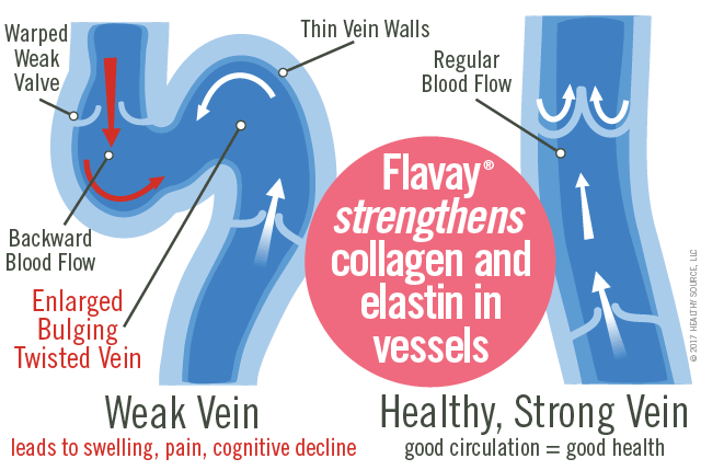 Weak veins are enlarged, bulging and twisted with warped weak valves, thin vein walls, irregular blood flow, and result in edema, swollen legs, ankles and feet. Healthy veins provide good circulation to heart, regular blood flow with normal vein walls and valves.