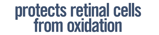 Flavay Protects Retinal Cells from Oxidation