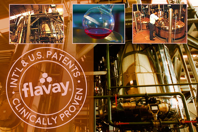 photos of the rigorous manufacturing controls and comprehensive testing of Flavay