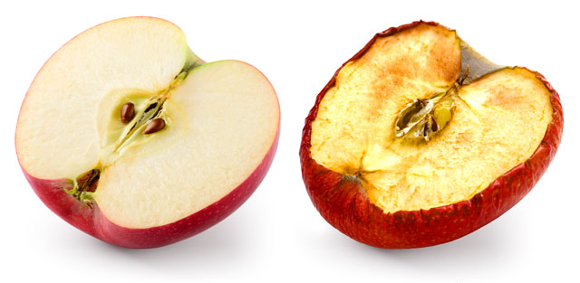 two apple slices, one is beautiful and undamaged by oxidation and the other is ugly and damaged by oxidation.